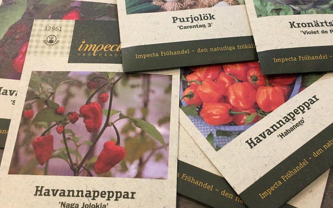 Årets fröer från Impecta